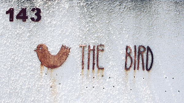 The Bird Oporto Foz